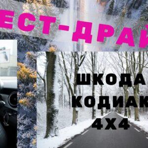 Тест-Драйв по снежной дороге, 4х4 SKODA KODIAQ SCOUT 2019