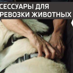 РЕМЕНЬ БЕЗОПАСНОСТИ для собак в SUV SKODA KODIAQ