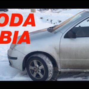 Лучшее решение Skoda Fabia за 200 тысяч