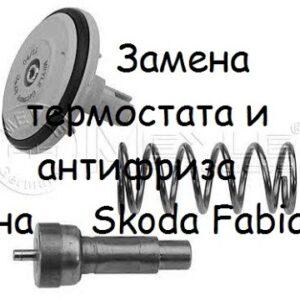 Как поменять антифриз с термостатом на Skoda Fabia
