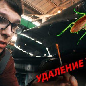 Как удалить жуки на кузове? кислотный грунт и покраска. ASP. Skoda Octavia a5